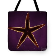 Netted Sea Star Tote Bag
