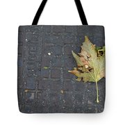 Never Wanted To Come Down Tote Bag