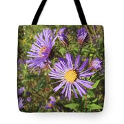 New England Aster Wildflower - Purple Tote Bag