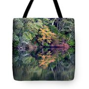 New England Fall Reflection Tote Bag