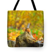 New Hampshire Chipmunk Tote Bag