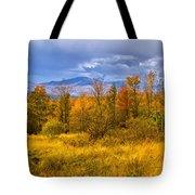 New Hampshire Fall Color Part Deux Tote Bag
