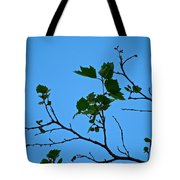 New Leaves Tote Bag