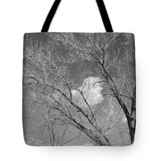 New Mexico Series - A Cloud Behind Black And White Tote Bag