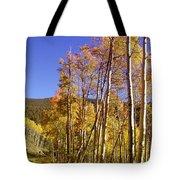 New Mexico Series - Autumn On The Mountain Tote Bag