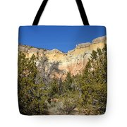 New Mexico Series - Bandelier I Tote Bag