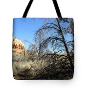 New Mexico Series - Bandelier II Tote Bag