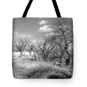 New Mexico Series - Bare Beauty Tote Bag
