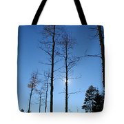 New Mexico Series - Bare Tree Sky  Tote Bag