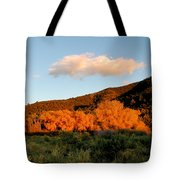 New Mexico Series - Cloud Over Autumn Tote Bag