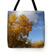 New Mexico Series - Desert Landscape Autumn Tote Bag