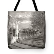 New Mexico Series - Late Day Tote Bag