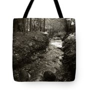 New Mexico Series - Late Winter Streambed Tote Bag