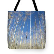New Mexico Series - Leaf Free On The Mountain Tote Bag