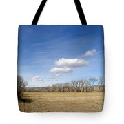 New Mexico Series - The Long View Tote Bag
