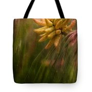 New Pines Cones In Spring  Tote Bag