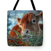 New Years Morning Cow Tote Bag