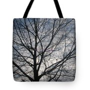 New Year's Morning Tote Bag
