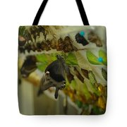 Newborn At The Butterfly Factory  Tote Bag