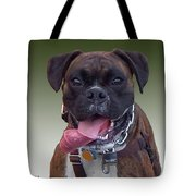 Nice Doggy Tote Bag