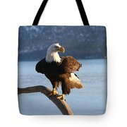 Nice Perch Tote Bag