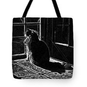 Nickel In The Moonlight Tote Bag