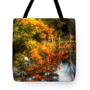 Niels' Third Pond Tote Bag