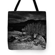 Nieve Of Adam Tote Bag