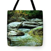 Night Encroaches Tote Bag
