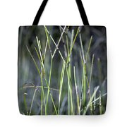 Night Walk Through The High Grass Tote Bag