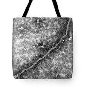 Nipah Virus Tote Bag by Science Source