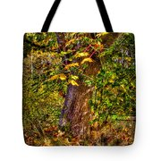 Nisqually Wildlife Refuge P12 The Maple Tree Tote Bag