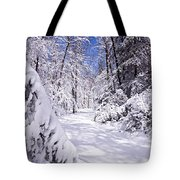 No Footprints Tote Bag by Rob Travis