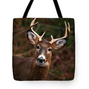 No Hunting Allowed Tote Bag