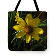 Nodding Bur Marigold Tote Bag