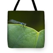 Non Distressed Damsel Tote Bag