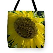 Normal Sun Tote Bag