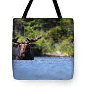 North American Hippo II Tote Bag