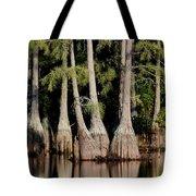 North Carolina - Lake Tote Bag