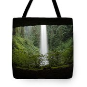 North Falls Oregon 2 Tote Bag