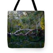 North Florida River Reflections Tote Bag