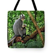 North Sumatran Leaf Monkey Presbytis Tote Bag