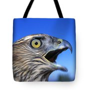 Northern Goshawk With Open Beak Tote Bag