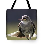 Northern Mockingbird - Lunch Is On The Way Tote Bag