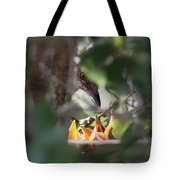 Northern Mockingbird - With Babies Tote Bag
