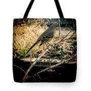 Northern Mockingbird On The Highline Tote Bag