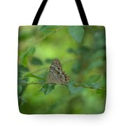 Northern Pearly Eye Butterfly Tote Bag