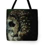 Northern Spotted Owl Strix Occidentalis Tote Bag