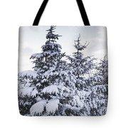 Northumberland, England Snow-covered Tote Bag