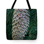 Norway Spruce Cone Tote Bag